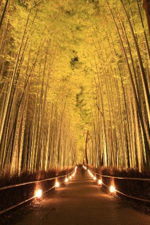 8 مکان شگفت انگیز دنیا که واقعا وجود دارند