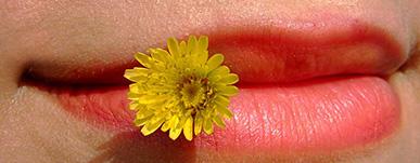 4 راه برای درمان سریع تبخال لب در خانه