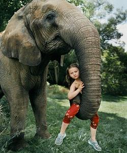 آملیا به یک توله ببر شیر میدهد