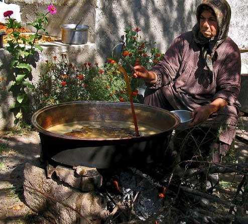 مراسمی پُر از شور و هیجان در باغات انگور در آذربایجان