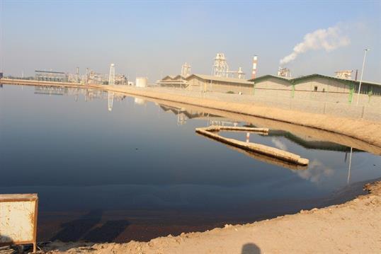 distillery wastewater treatment